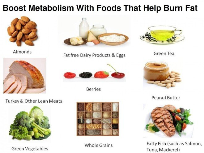 Foods And Drinks That Increase Metabolism