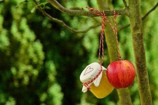 apple cider vinagar