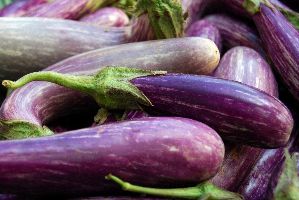 eggplants-1.jpg