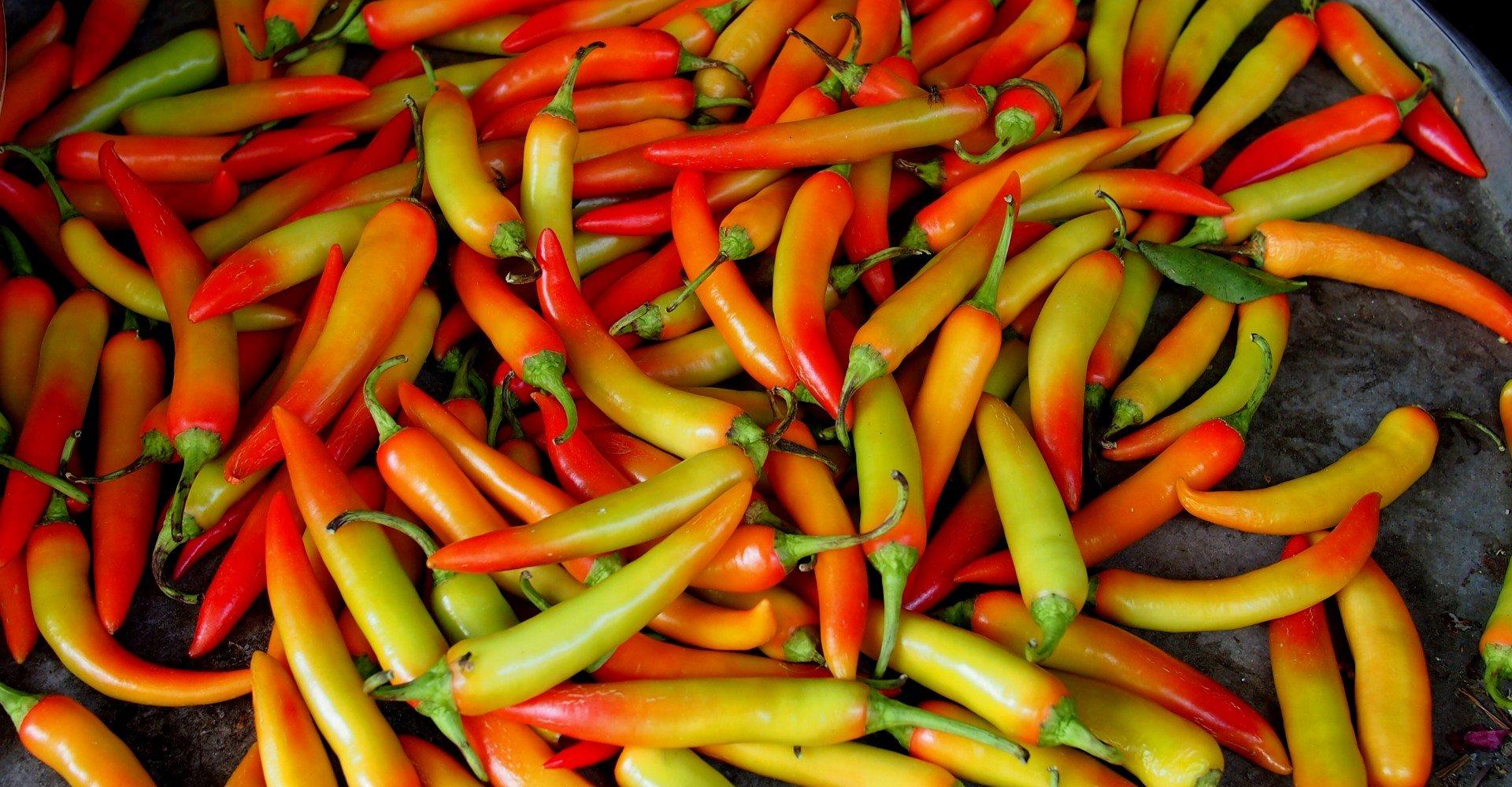 spicy-1.jpg
