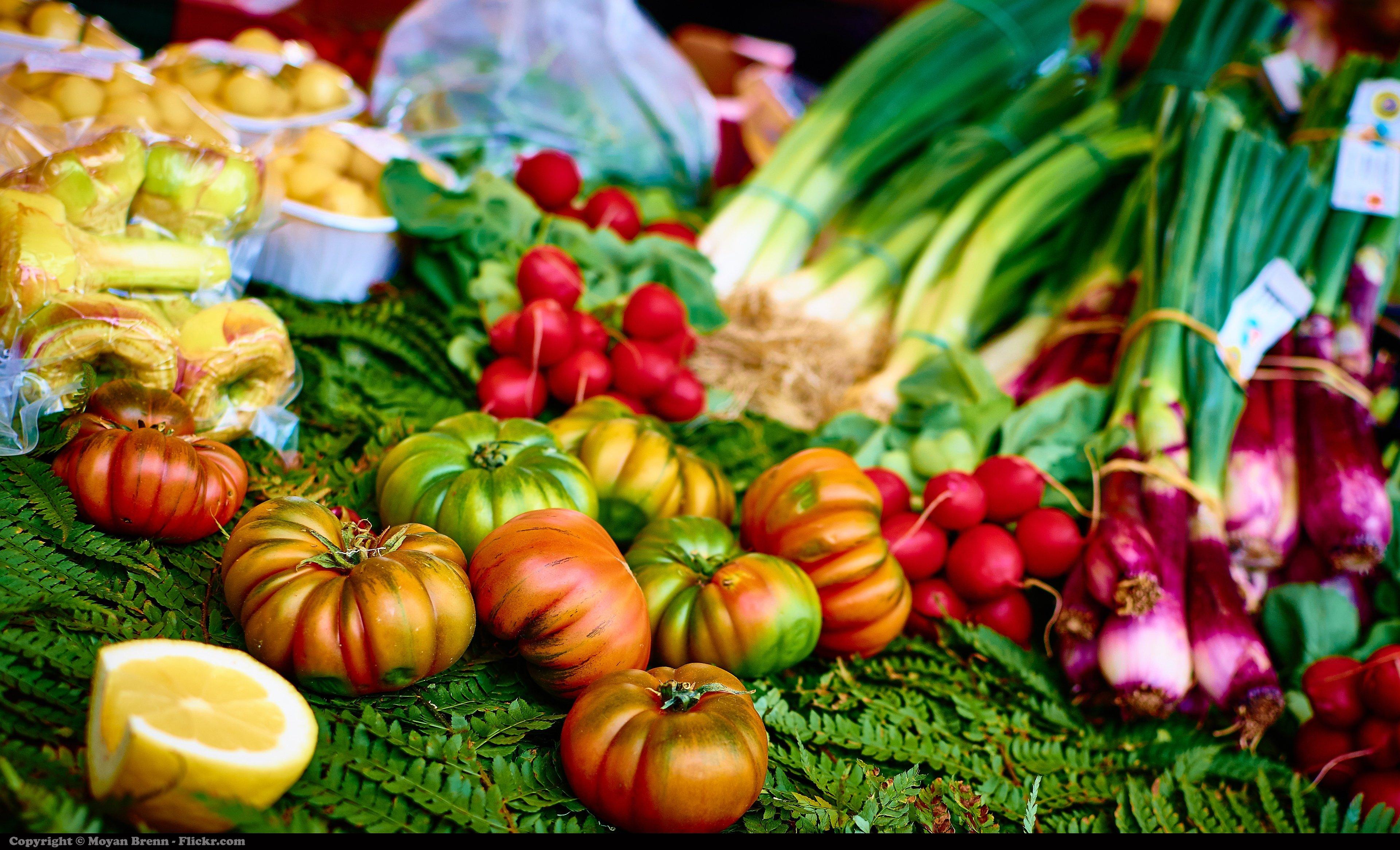 vegan-diet-3.jpg