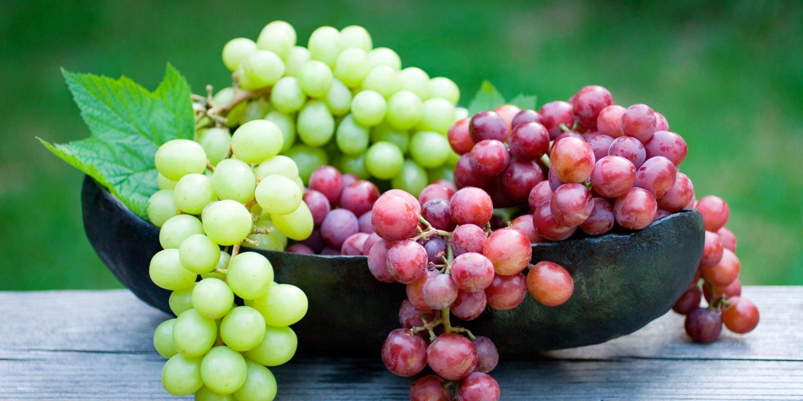 grapes-1.jpg