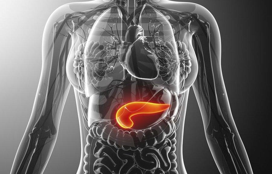 pancreatitis-1.jpg