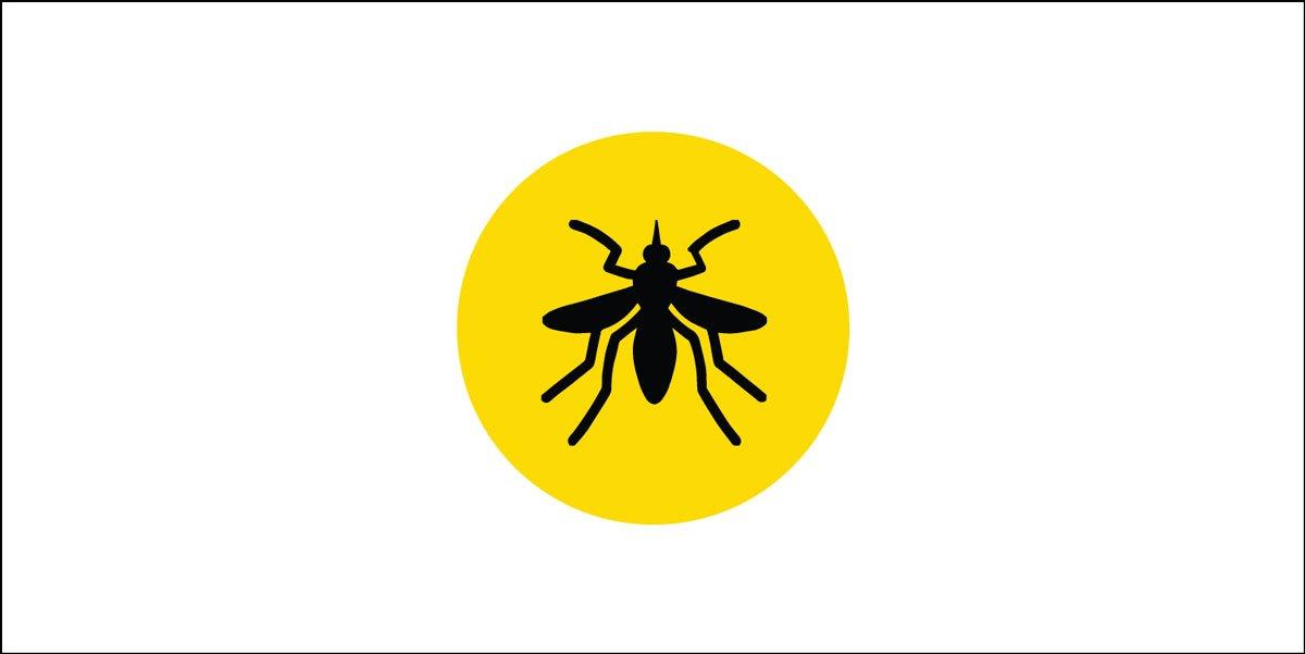 yellow-fever-1.jpg
