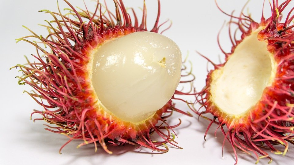 Image result for caution in eating rambutan