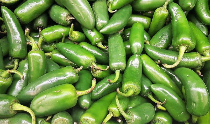 jalapeno-peppers-1.jpg