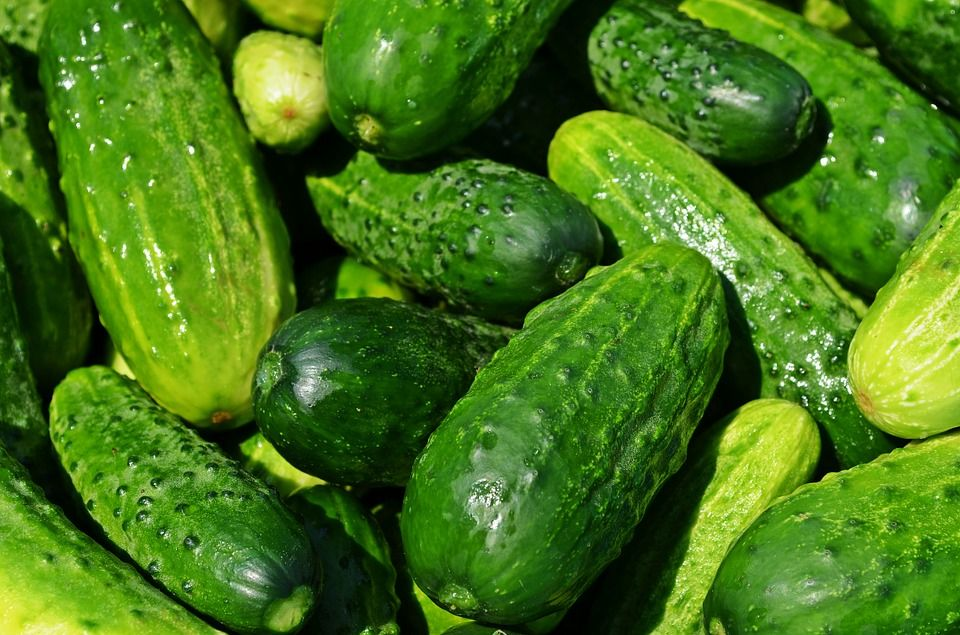 13-amazing-health-benefits-of-cucumber-1.jpg