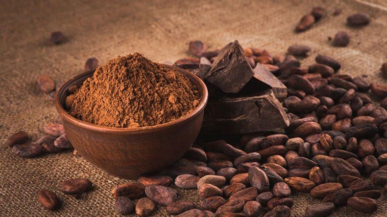 cocoa-1.jpg