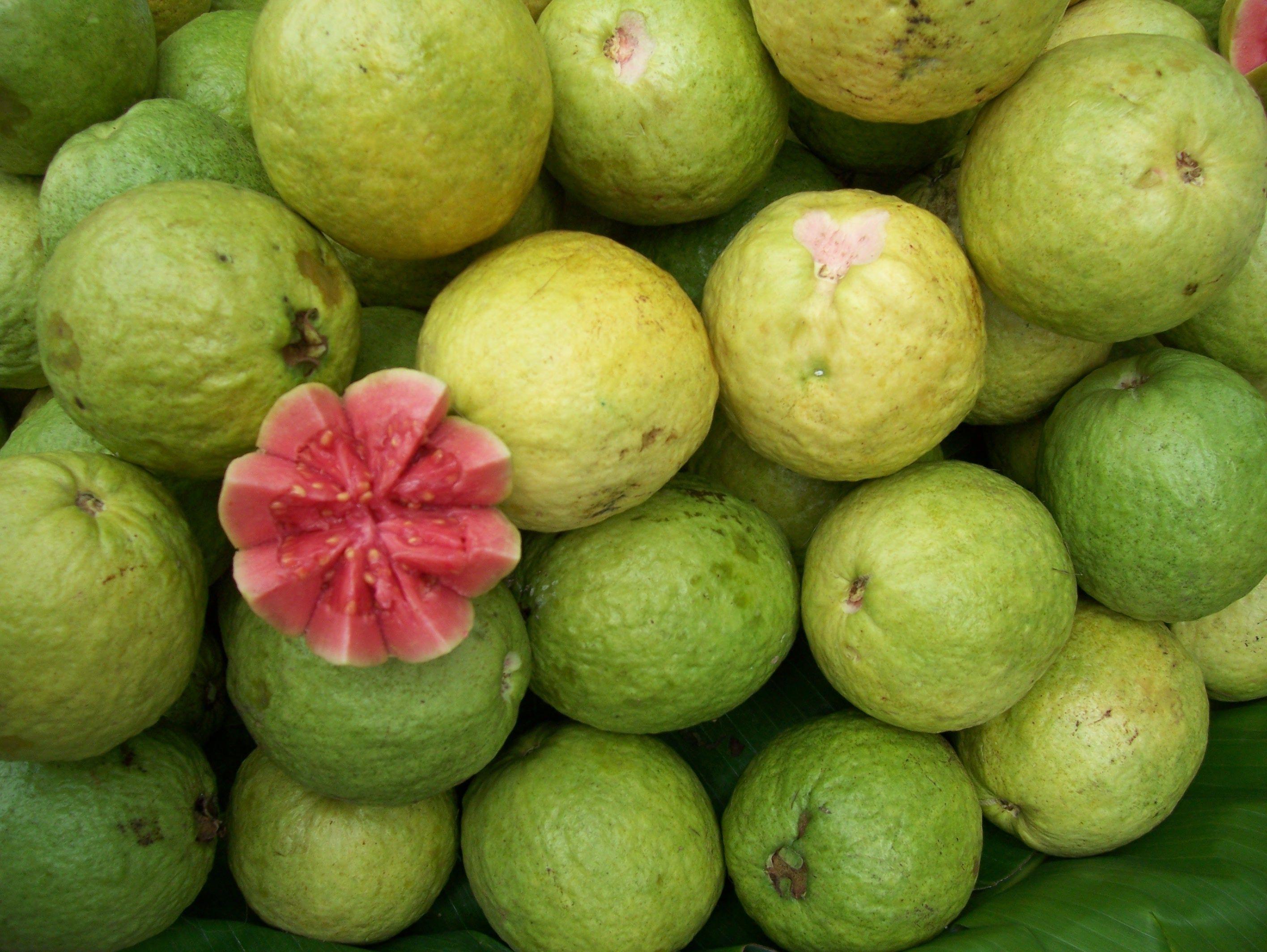 guava-1.jpg