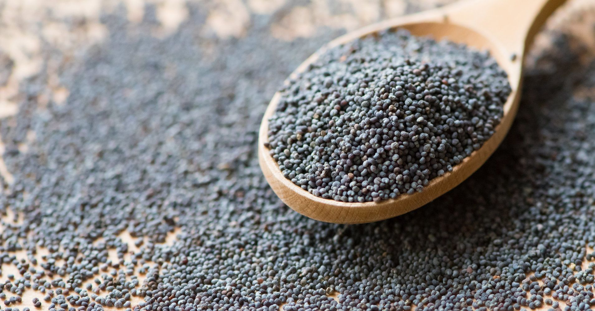 poppy-seeds-1.jpeg